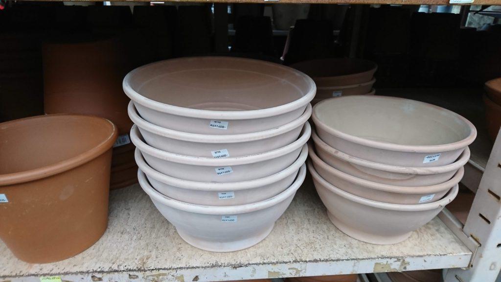 お気に入りの鉢を見つけるのもホームセンターの楽しみです