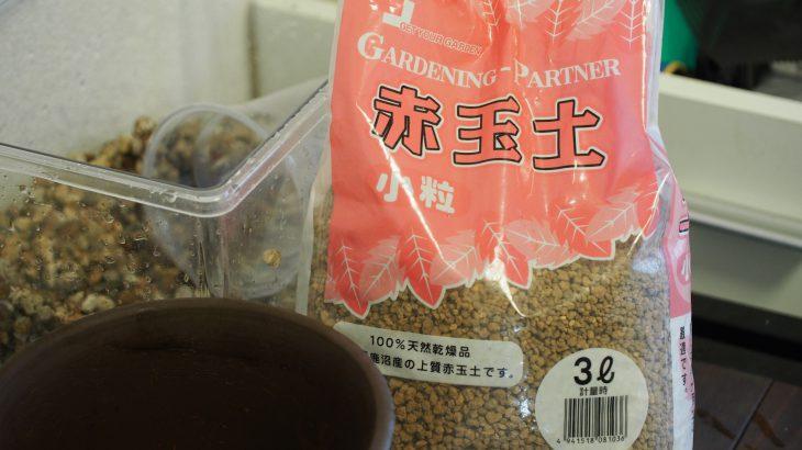 赤玉土は非常に安価で手に入る