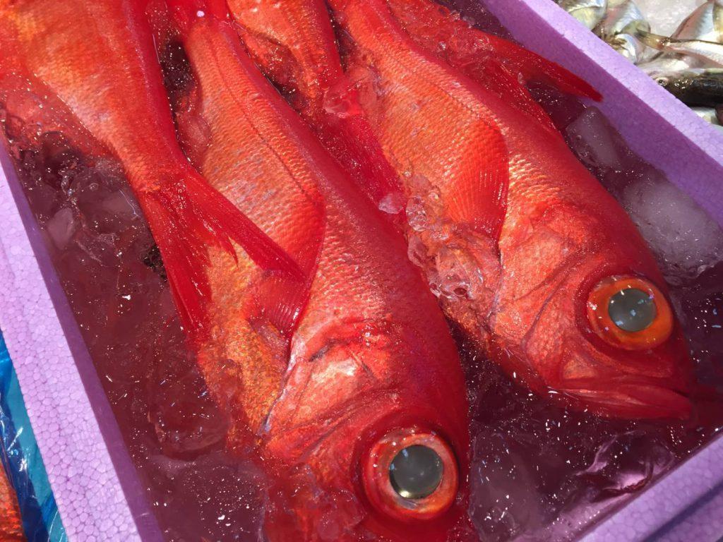 釣りもののキンメダイは特に高値になる