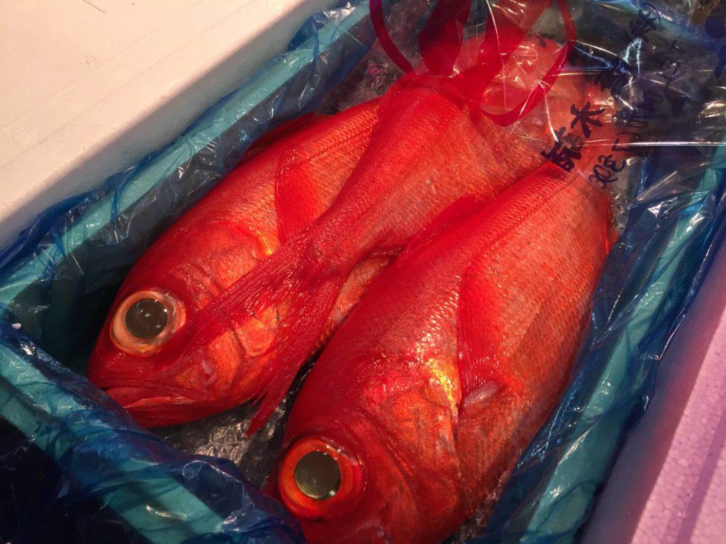 キンメダイ。美味しい高級深海魚です