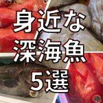 【マニア必見】え、この魚も!?食べられる身近な深海魚5選を紹介するよ