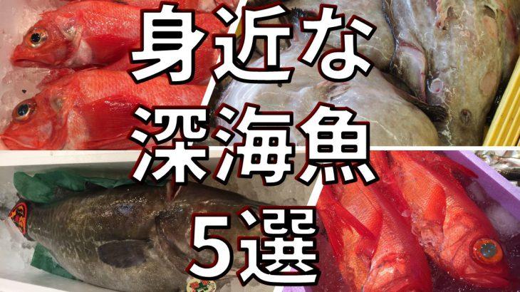 身近な食べられる深海魚5選