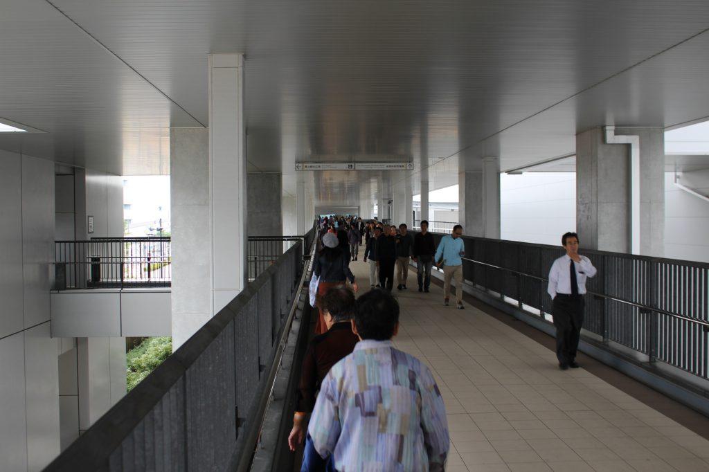 豊洲市場の見学ルートは雨に濡れない!