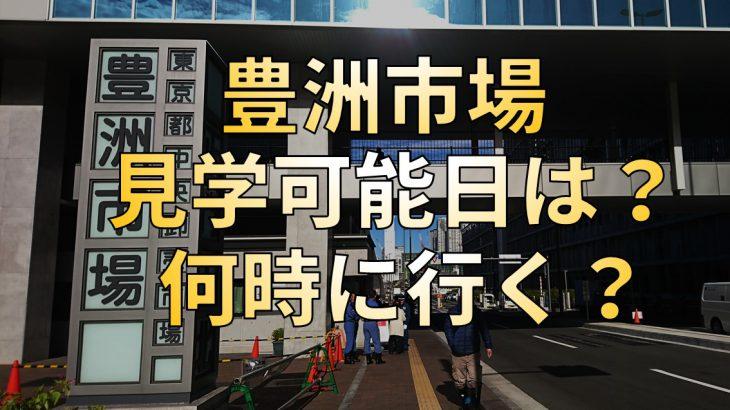 豊洲市場を見学するときは開市日に注意!見学できる日と時間は要チェック!