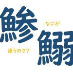 日本の大衆魚の代表!イワシとアジの違いと見分け方、旬の時期や食べ方を解説します!