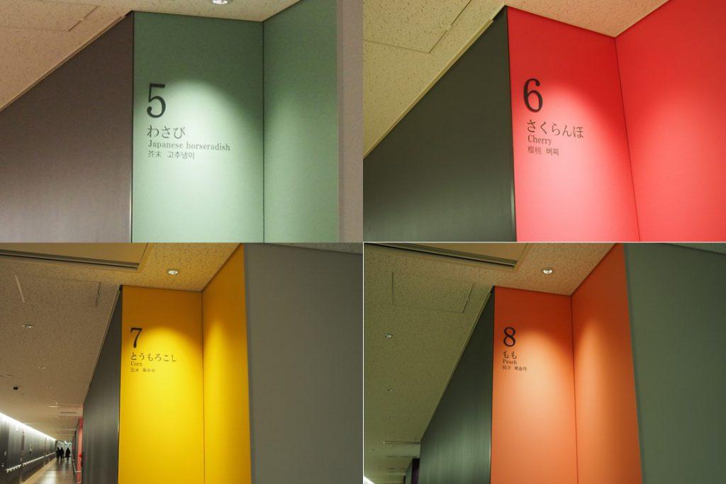 豊洲市場青果棟の色と番号2