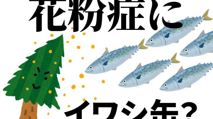 【いわし缶】花粉症にイワシやサバなどの青魚は効果あり?効果なし?EPAやDHAのアレルギー緩和効果を調べてみた