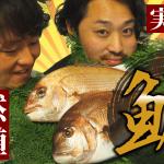 【動画あり】天然真鯛と養殖真鯛、味に違いはあるの?同じ値段のマダイで比較してみた!