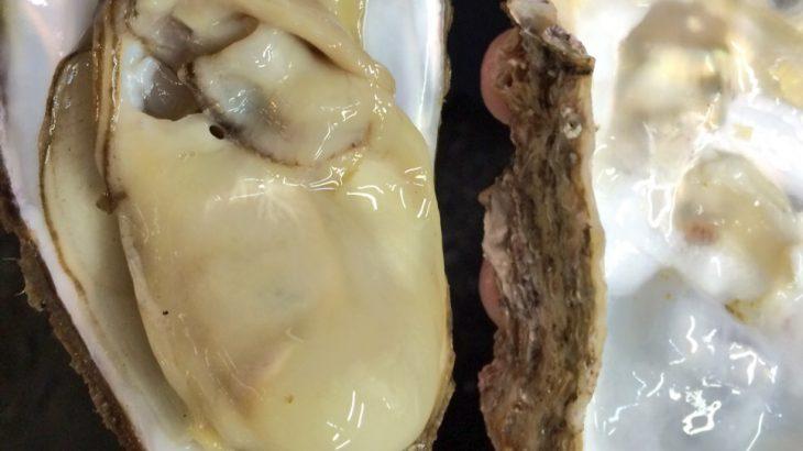 牡蠣はダイエットに向いている?不向き?栄養を調べてみたら驚きの結果!