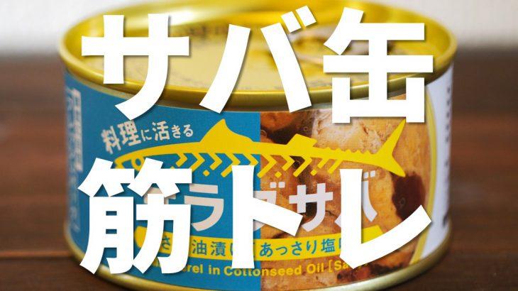 サバ缶は筋トレに向いているってほんと?どんな栄養を摂れる?おすすめサバ缶と簡単激ウマレシピも公開するよ