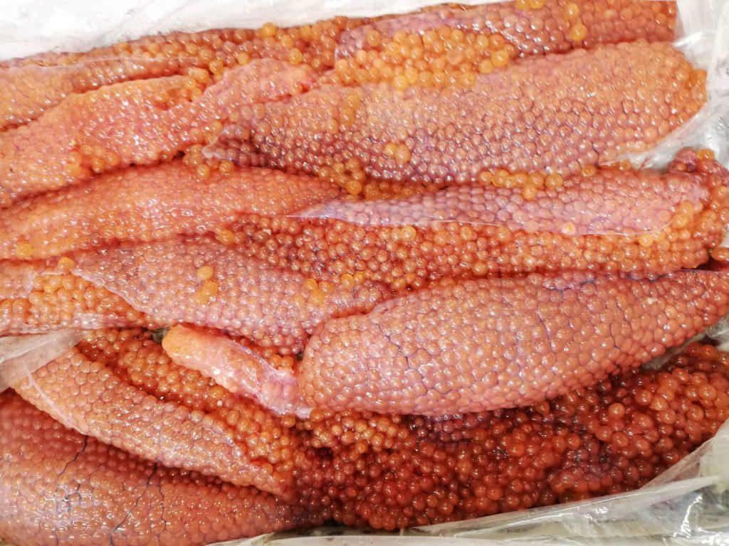 秋鮭の脂質はイクラに吸収されている…