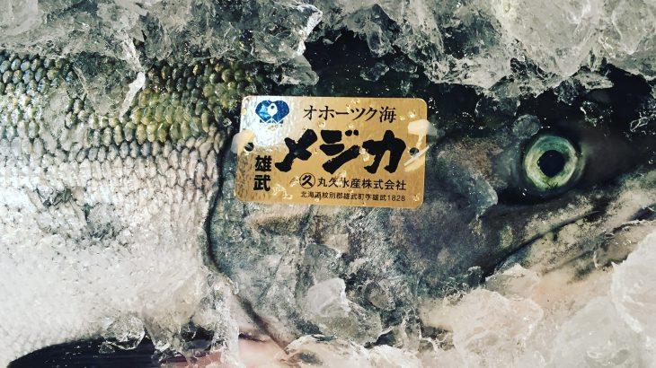 サーモンは筋トレに効果あり?効果なし?食べるなら『天然の秋鮭』がおすすめだ!