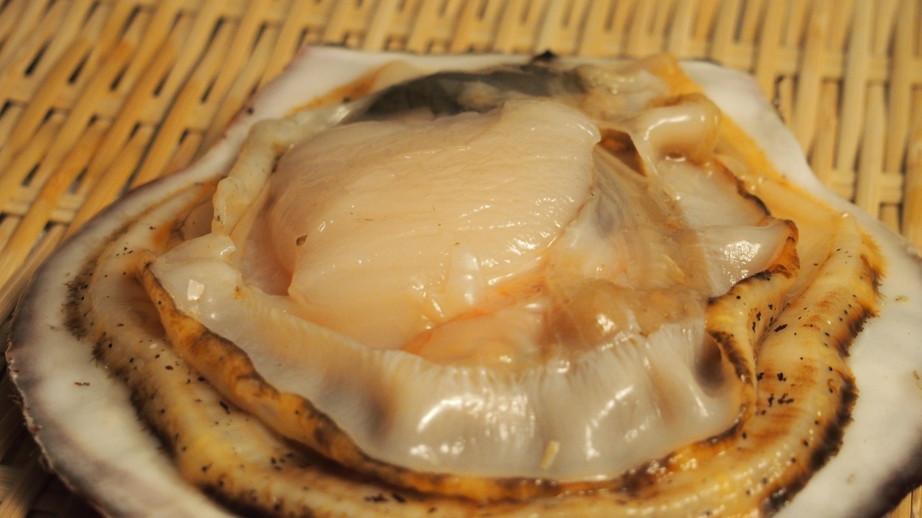 ホタテは貝類の中でも特に貝柱が大きい